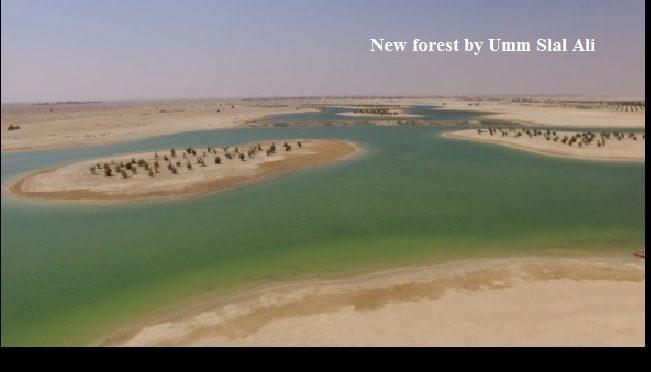 La réutilisation des eaux usées pour reverdir le Qatar
